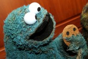 The Cookie Monster on display at a special National Museum of American History