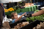 Food Stamps Help Bridge Gap For 20 Percent Of Americans Who Struggle With Hunger During Recession