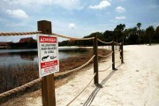 Disney Installs Alligator Warning Signs In Aftermath Of Toddler Death At One Of Its Resorts