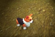 Corgi Pup Battle Pet and WoW's 12th Anniversary Event!
