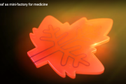 Artificial leaf as mini-factory for medicine