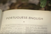 Learning a new language can be one of the things you can do while looking for job.